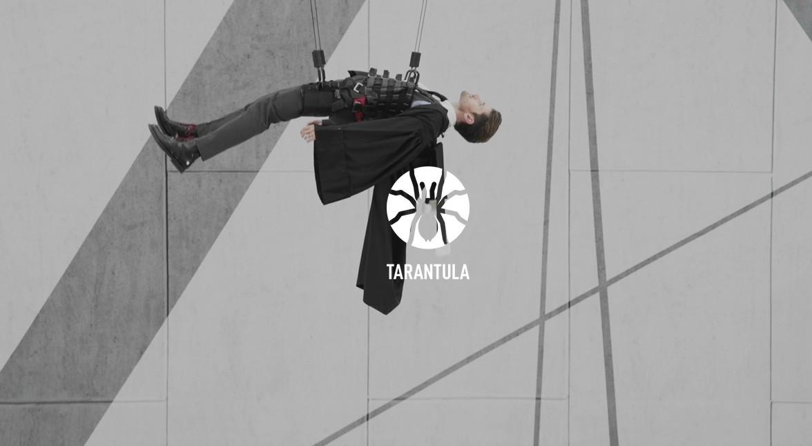 Tarantula fête ses 22 ans sur Youtube
