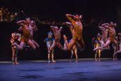 Danse : la Biennale de Cannes débute ce vendredi