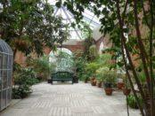 Devenez mécène des grandes serres du Jardin Botanique de Metz