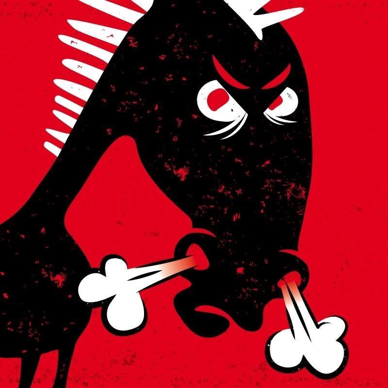 Donkey Rock Festival : sincérité à taille humaine