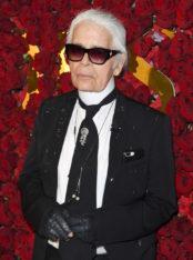 Karl Lagerfeld x Puma : la collab' chic et sportive de l'automne