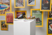 Vans x National Geographic, la collab' pour les explorateurs