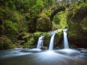 Tourisme local : un essor à confirmer malgré la crise